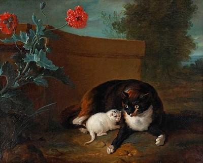 chatte-et-chaton-et-chien-et-perroquet-1737